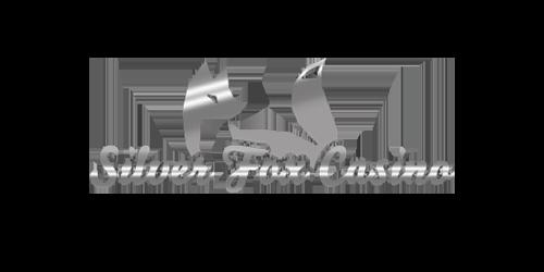 Silver Fox Casino  - Silver Fox Casino Review casino logo